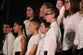 MS Spring Concert showcases talent image