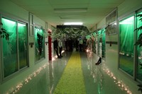 high school hallway decorated for homecoming