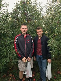 two male students apple picking