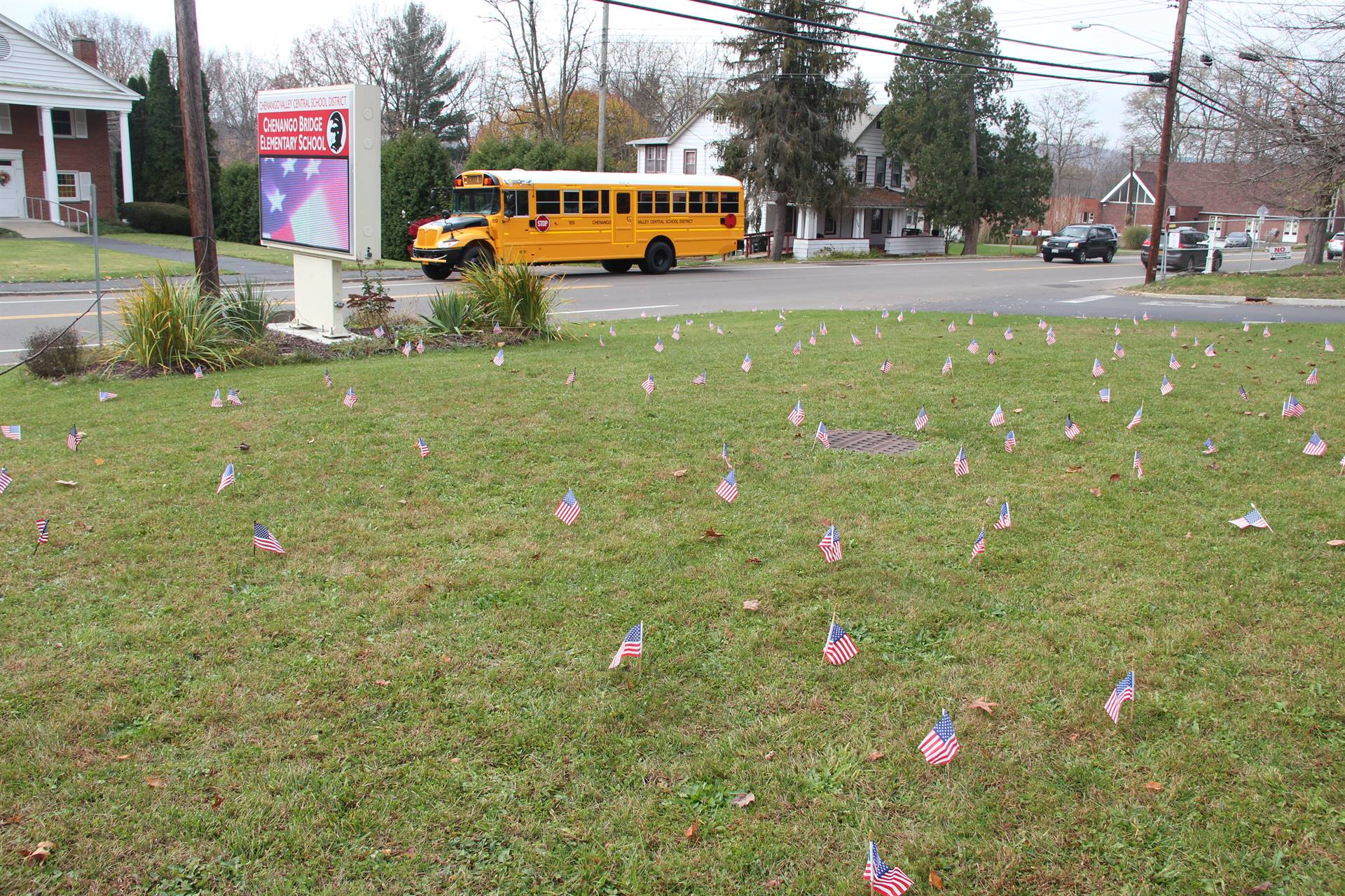 lawn full of flags with c v bus in background