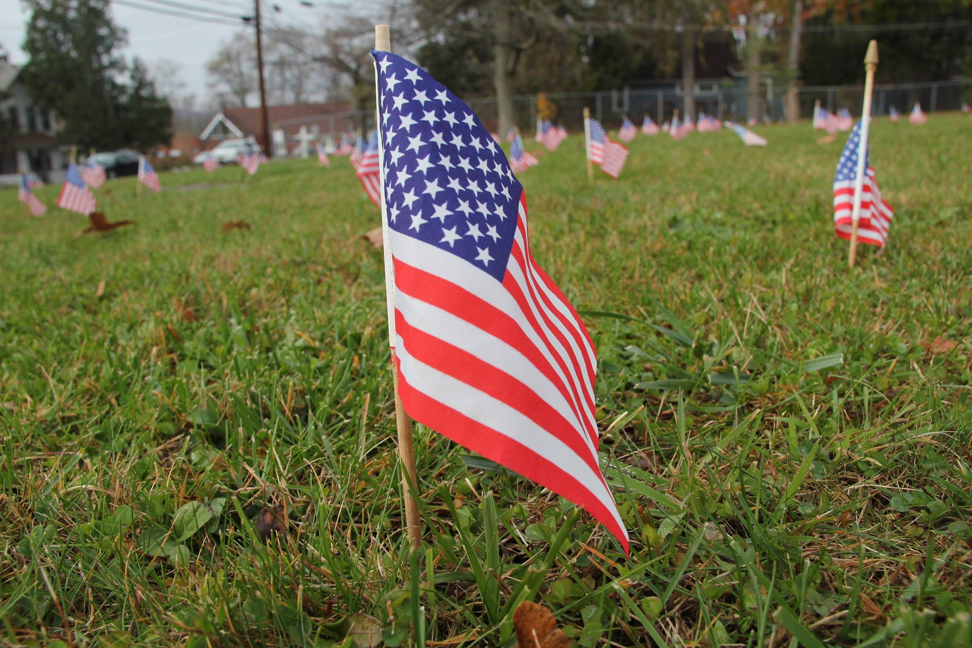 close up of american flag with many other planted behind it