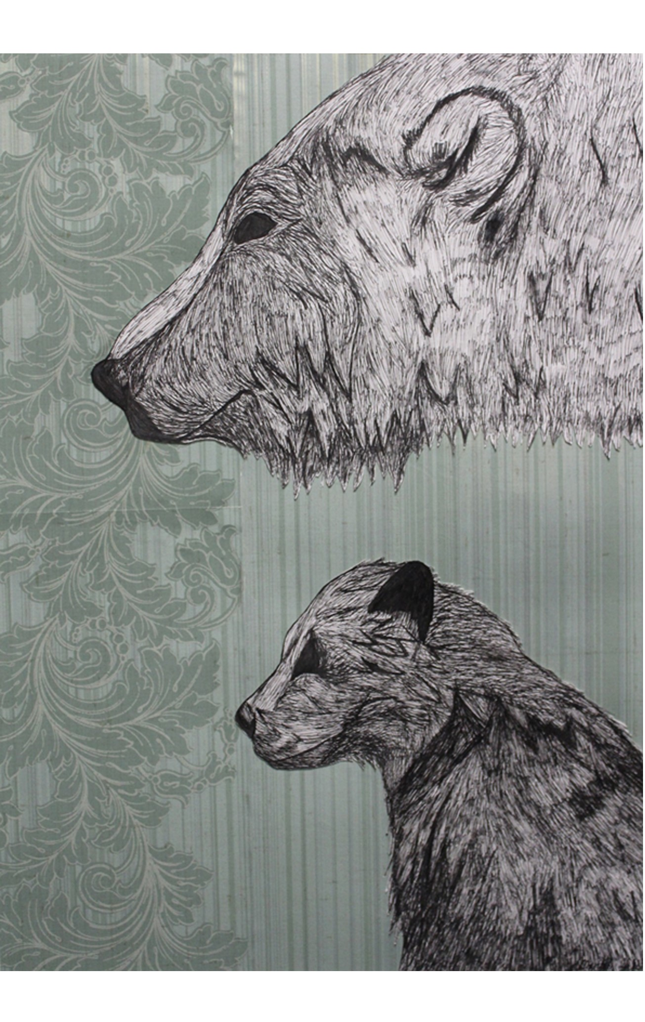 illustration of two bears