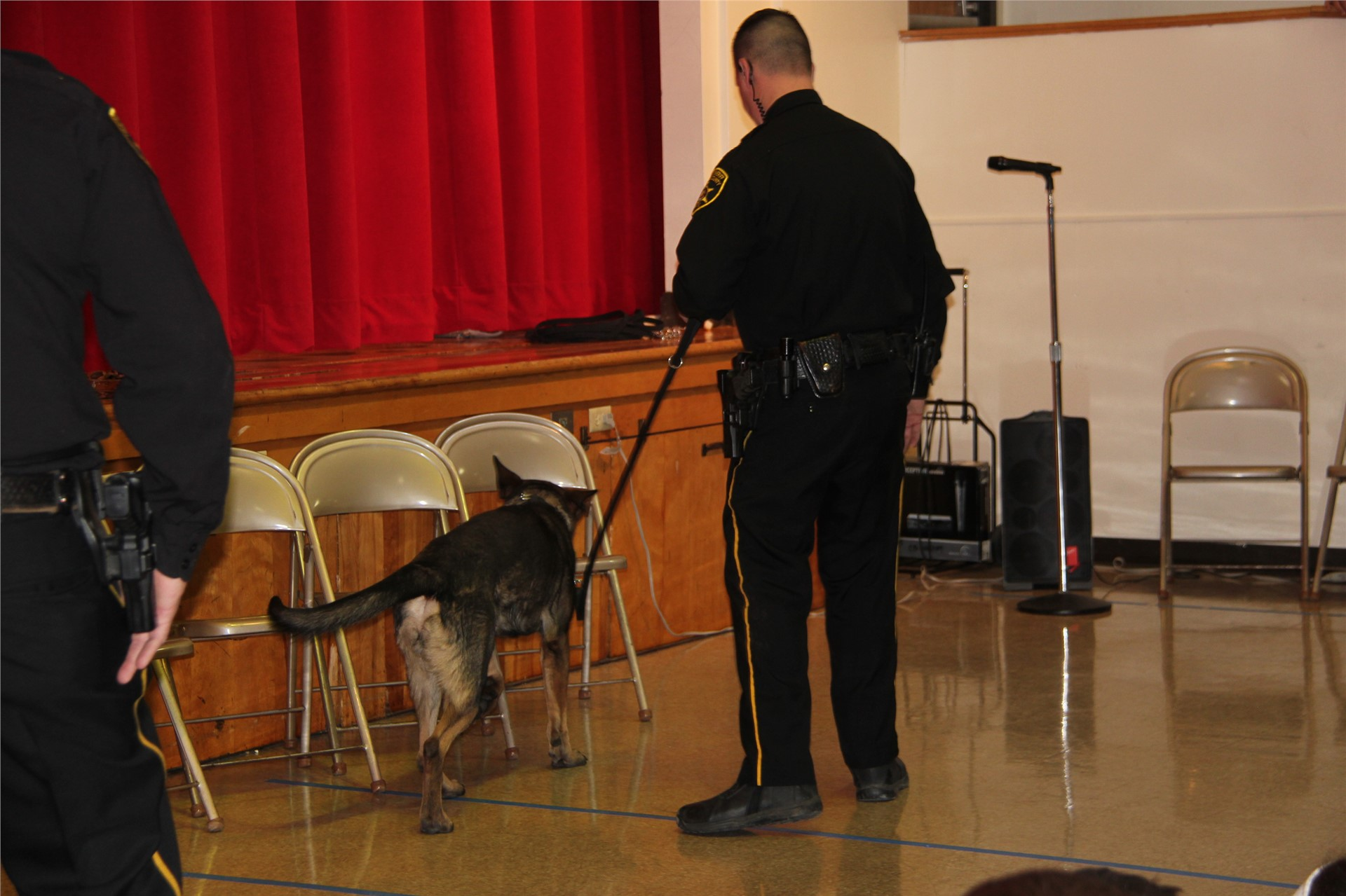 police dog smelling chairs