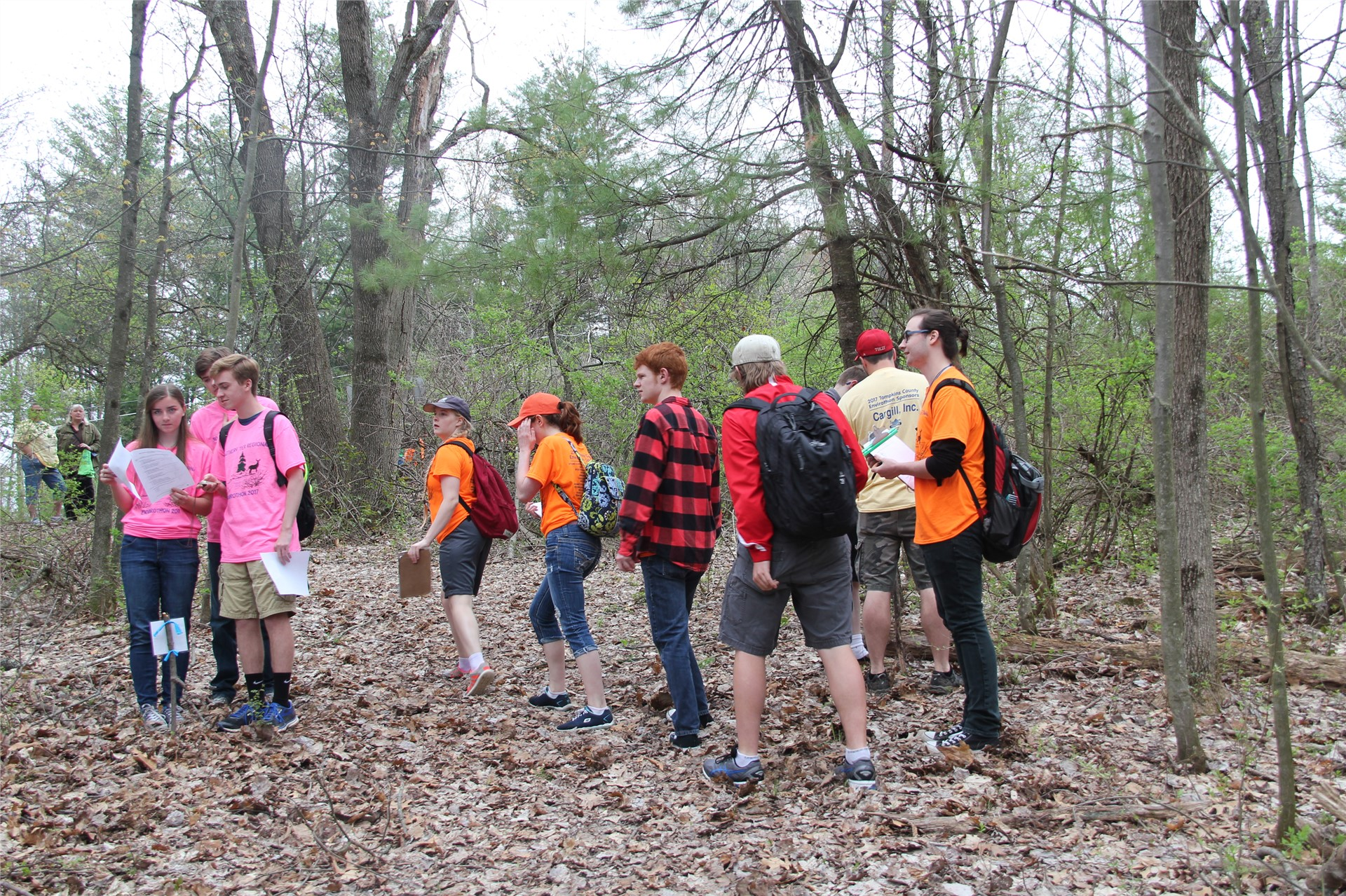 group of students walking in wooded area