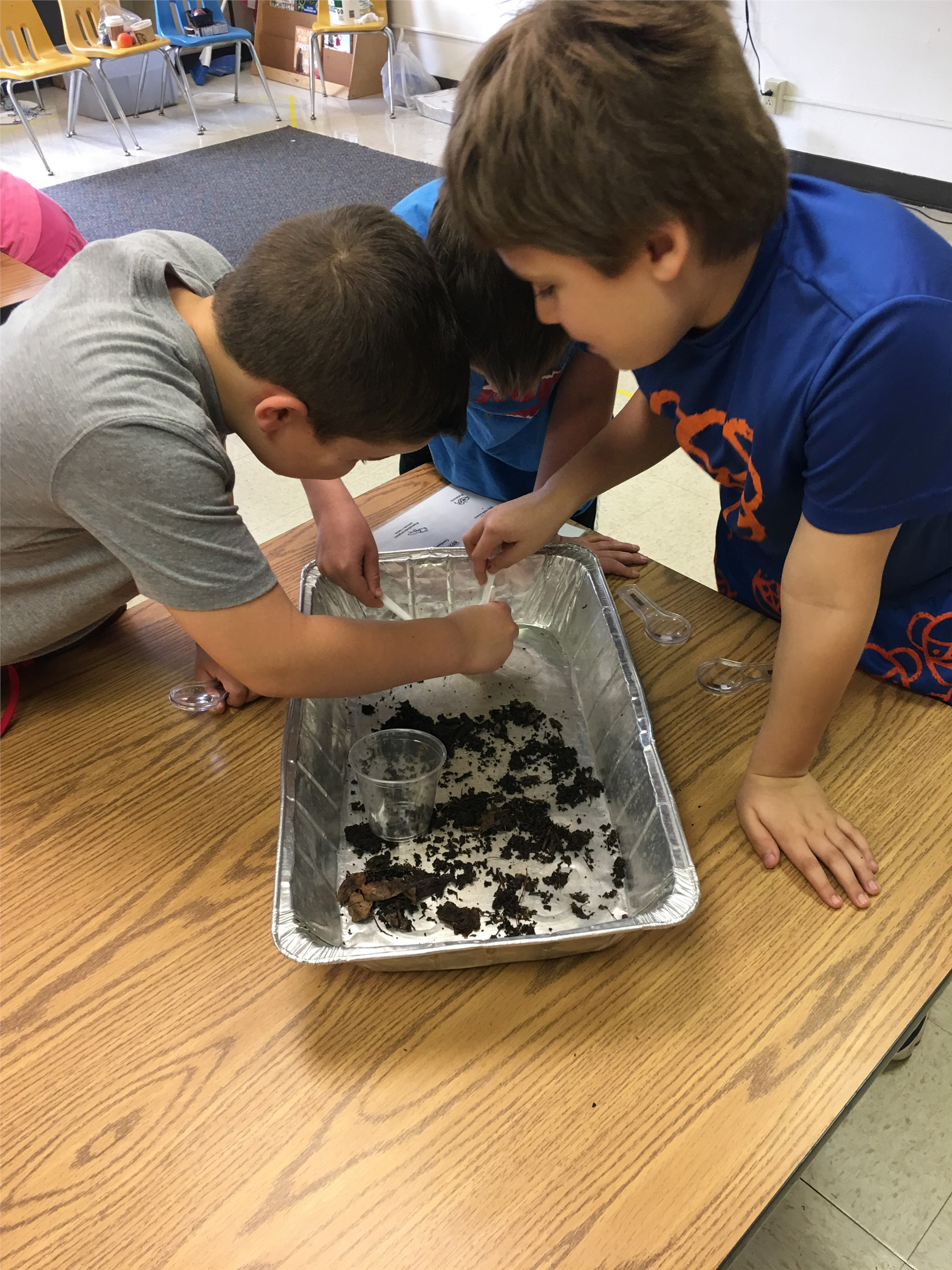students working with compost materials