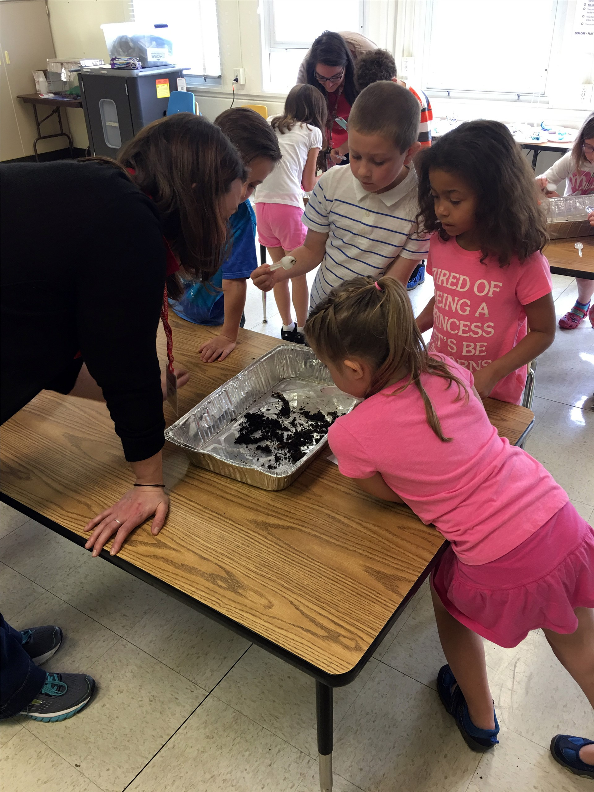 groups of students working with compost materials
