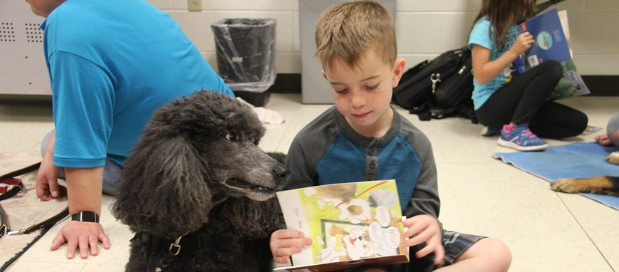 boy reads to therapy dog