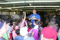 dutch hill creamery owner teachers students about cows inside of cow barn