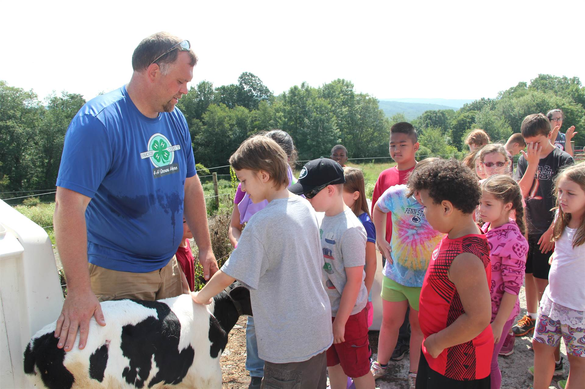 students pet one week old calf.