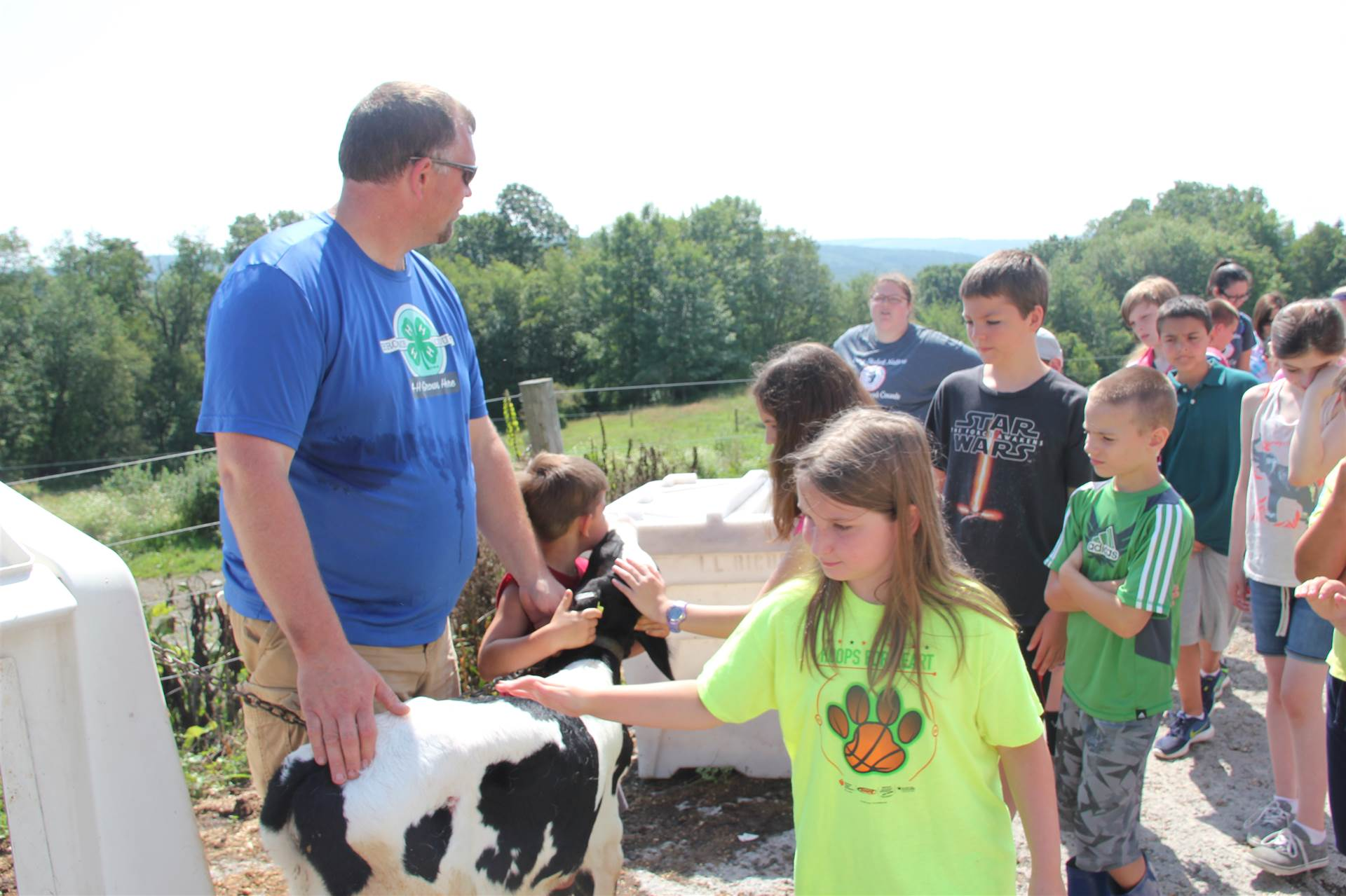 more students pet one week old calf