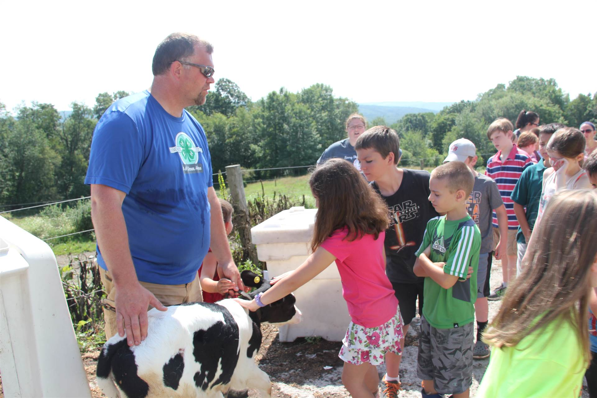 other students pet one week old calf