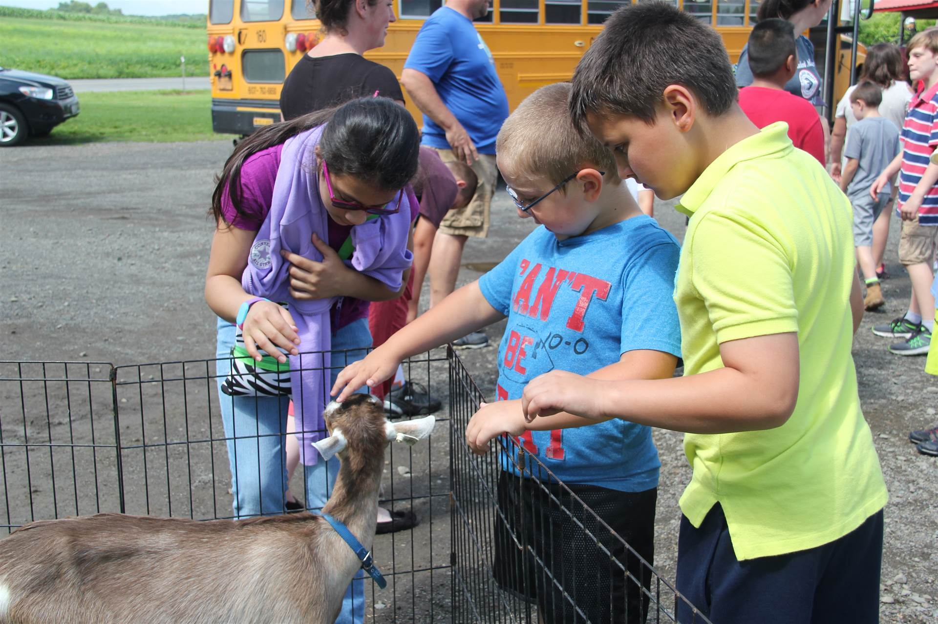students pet goat in pen