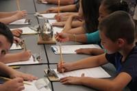 students sketch metallic fish