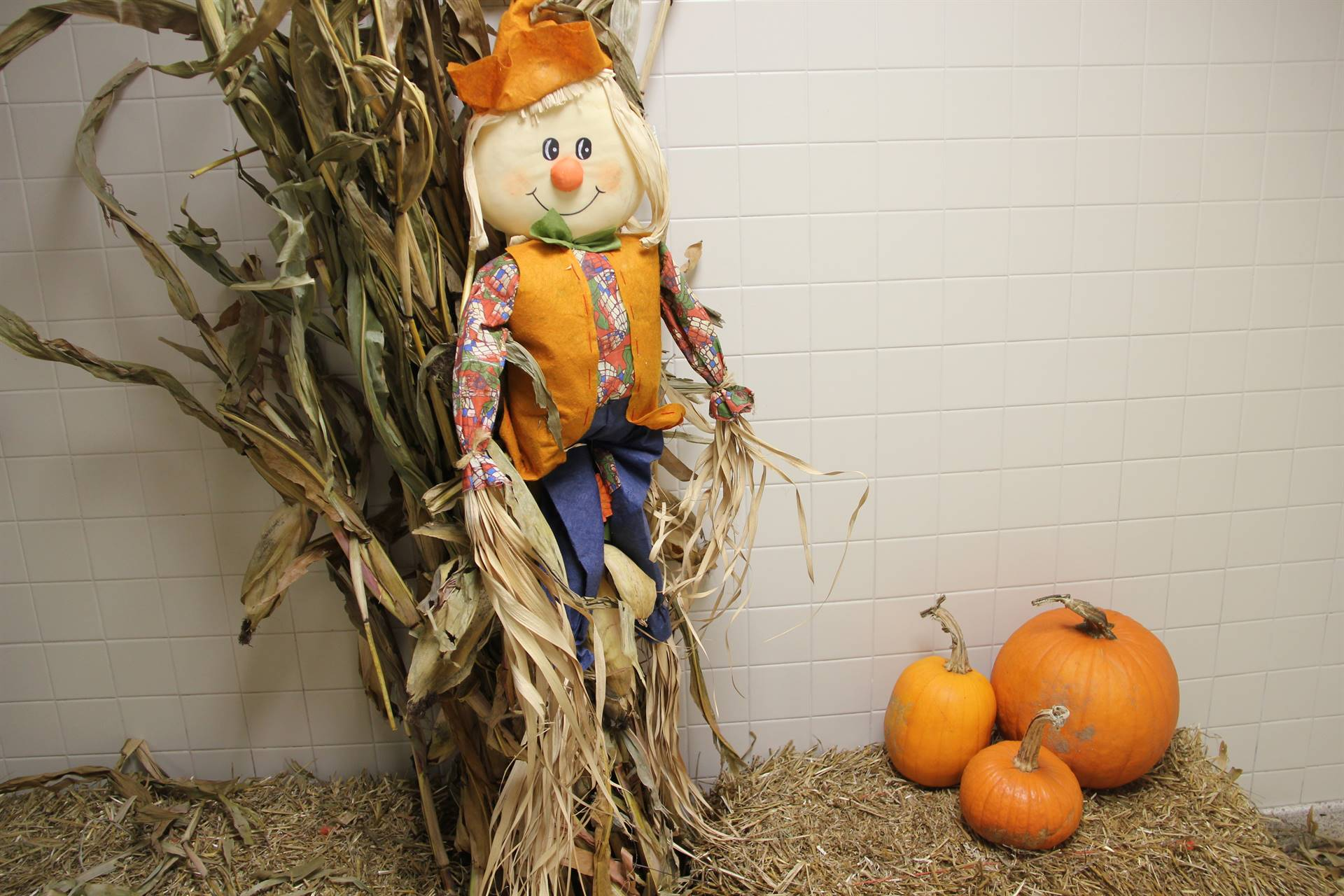 scarecrow and pumpkins