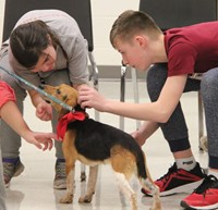 students petting dog