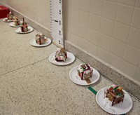 gingerbread houses in hallway