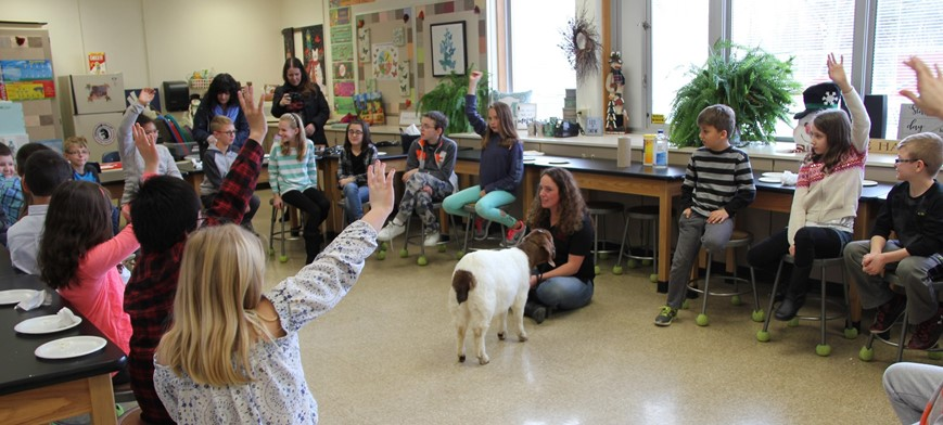 students raising hands during ag in the classroom activity