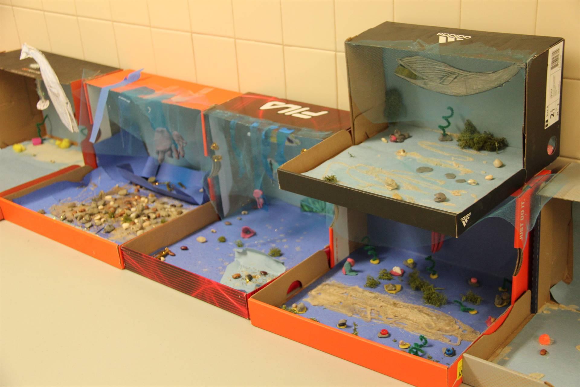 completed ocean habitat shoeboxes