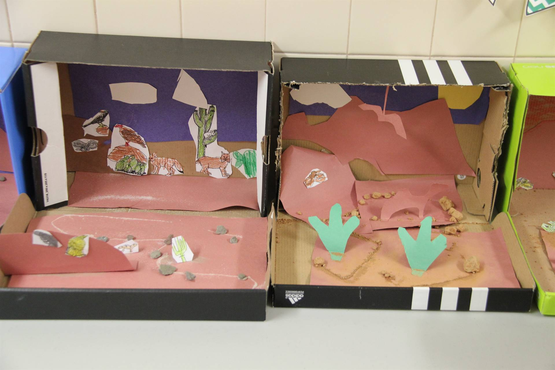 example of two completed desert habitats