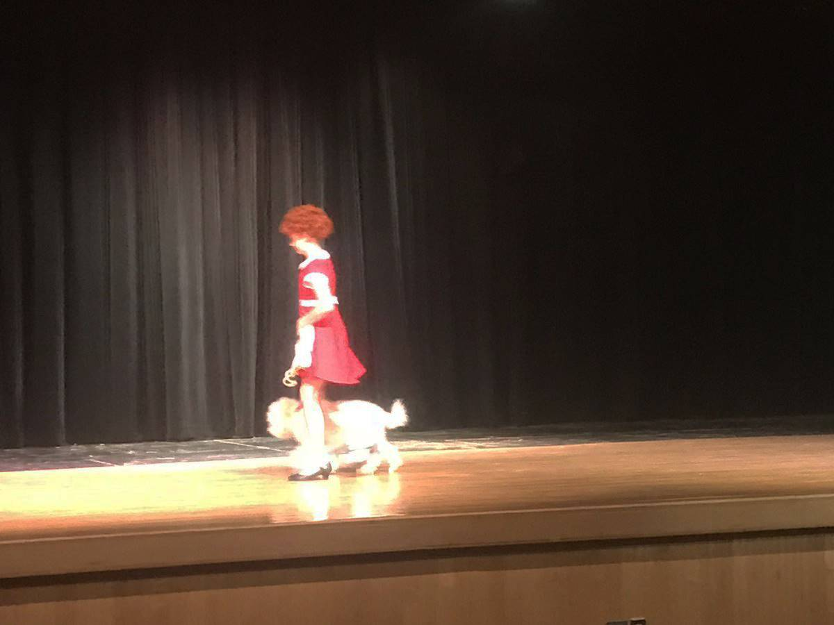 student dressed as Annie with dog