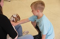 student petting goat 4