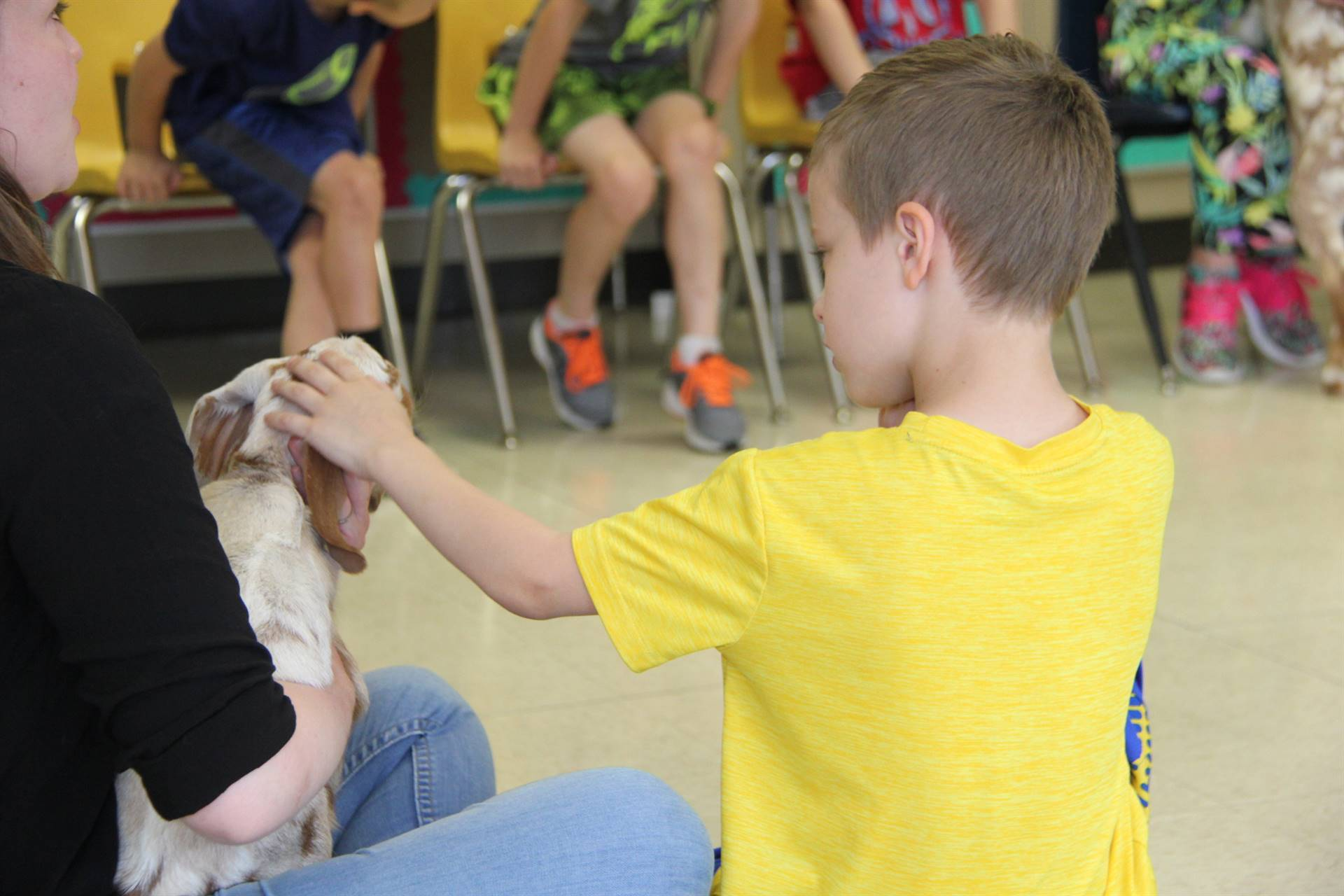 student petting goat 3