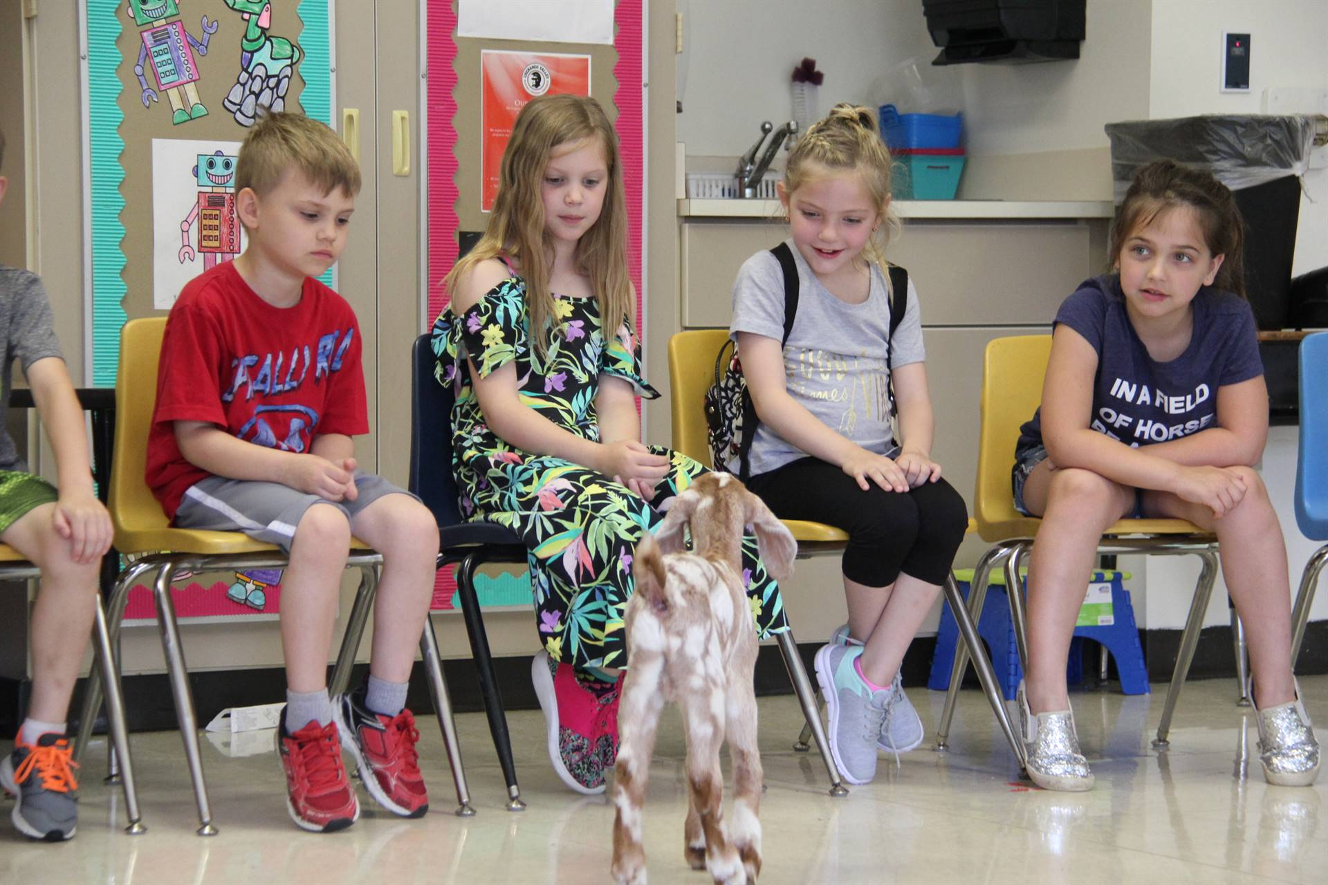 goat visiting students sitting 3