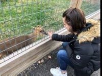 Chenango Valley French Exchange student petting animal