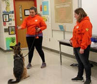 search and rescue trainers working with dog