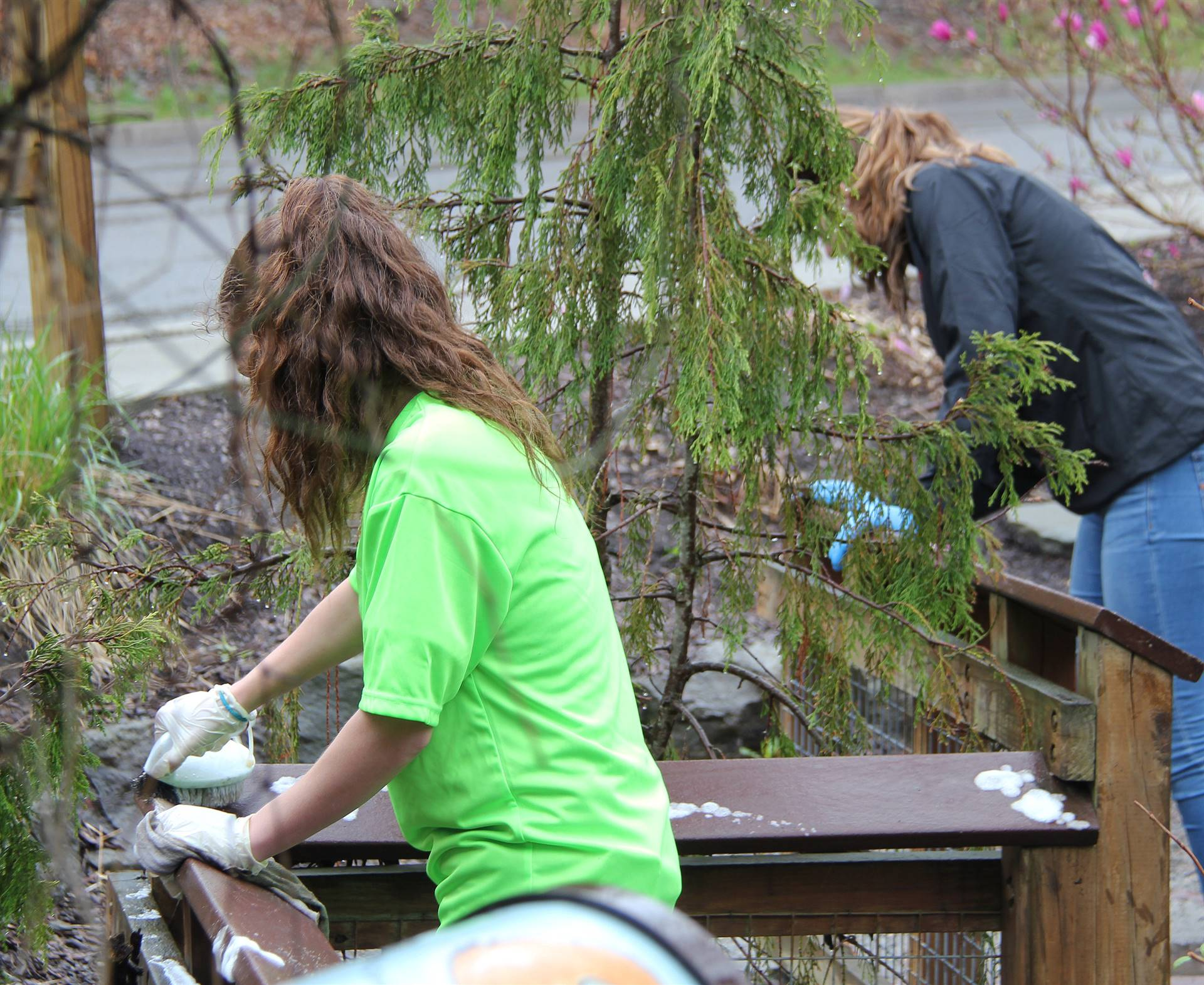 Day of Caring 8
