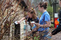 Day of Caring 3