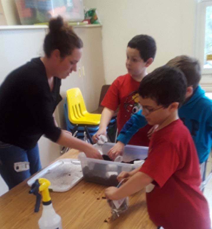 Second Grade Ag in the Classroom Activity 10