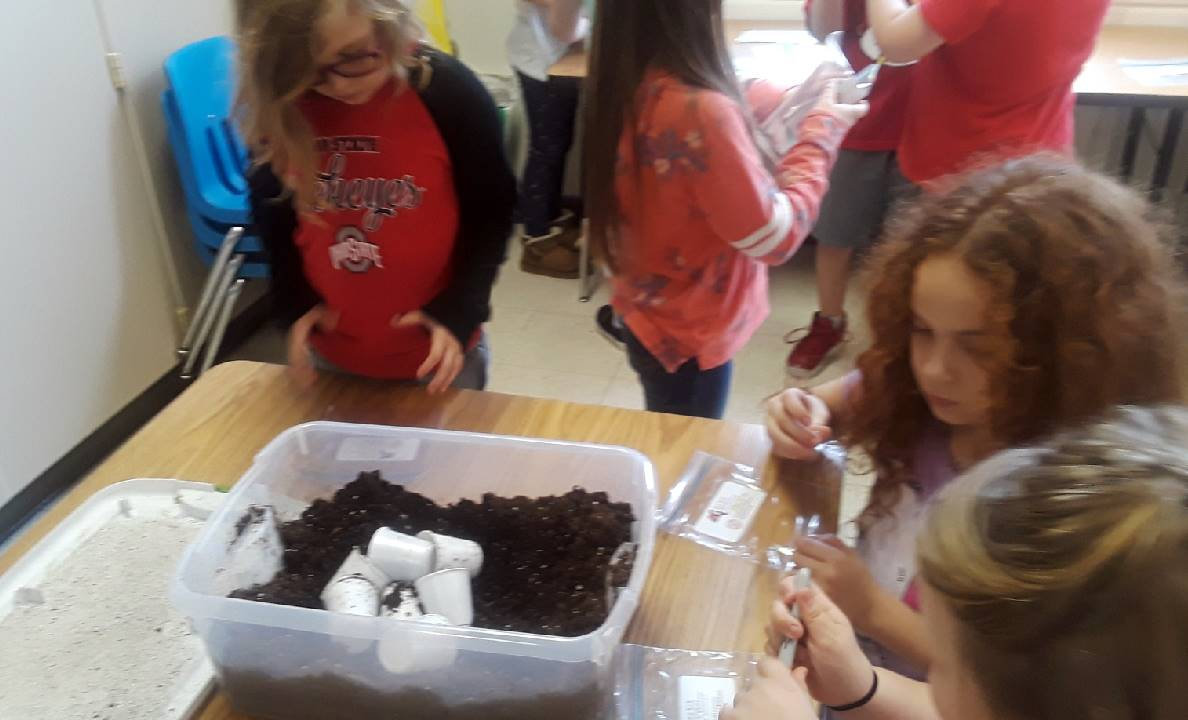 Second Grade Ag in the Classroom Activity 8