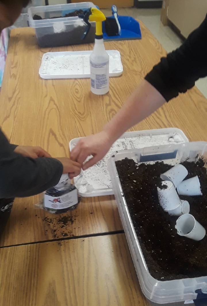 Second Grade Ag in the Classroom Activity 7