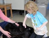 Kindergarten Ag in the Classroom Activity 13