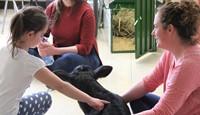 Kindergarten Ag in the Classroom Activity 12