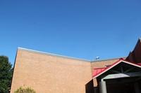 wide shot of bald eagle flying over school