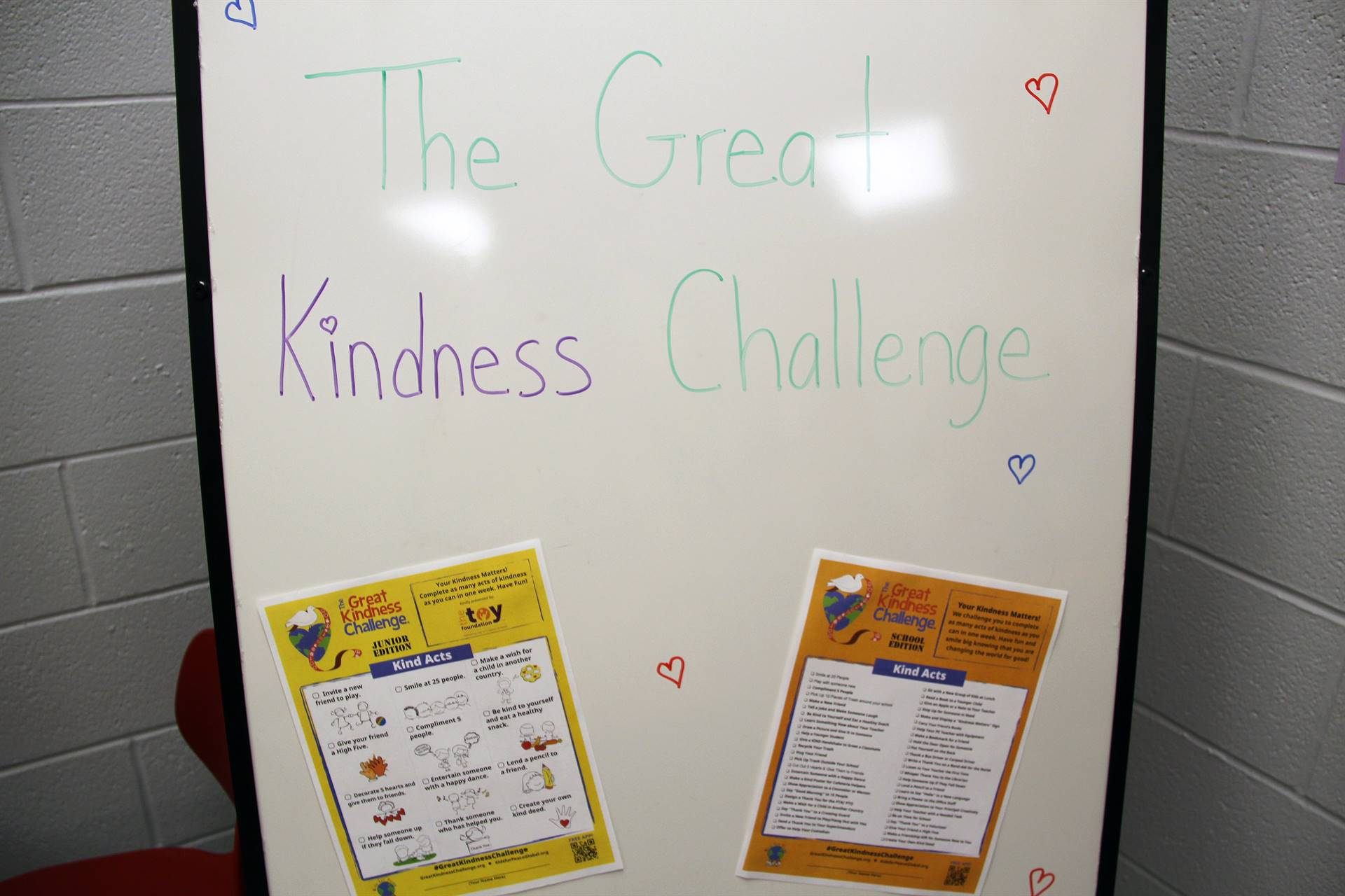 the great kindness challenge sign
